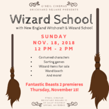 Wizard School is in Session at Brickyard Square Sunday, Nov. 18